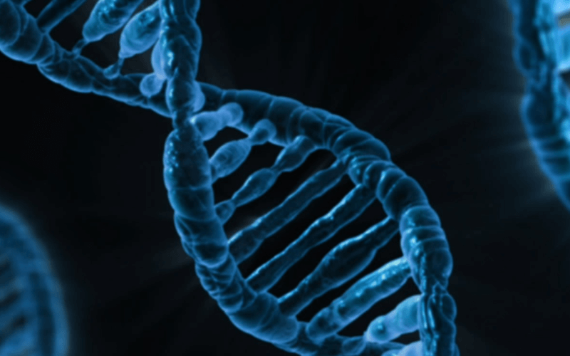 Gene Therapy Technologies
