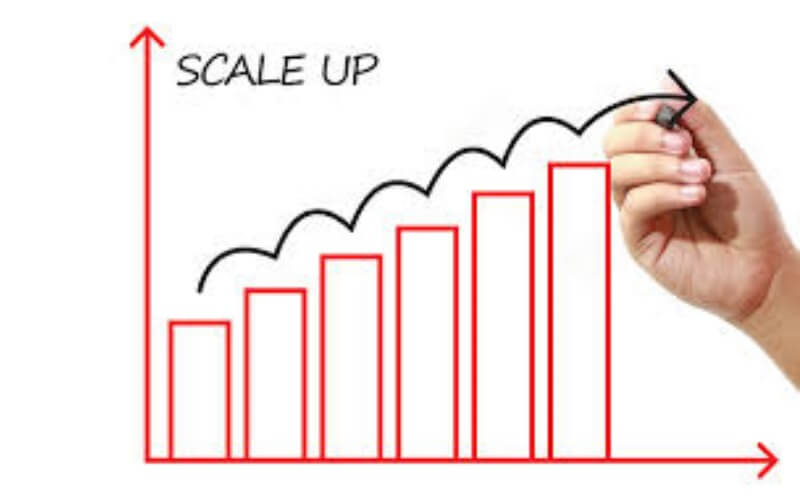 Shortage of talent no 1 barrier for Scale Up